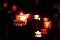 Фестиваль водных фонариков., Фото: 30