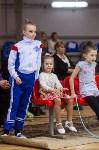 Соревнования по художественной гимнастике 31 марта-1 апреля 2016 года, Фото: 147