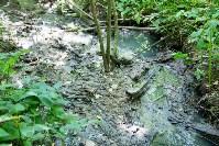 В реку Иншинку несколько лет стекает канализация, Фото: 7