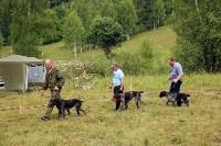 Выставка охотничьих собак под Тулой, Фото: 75