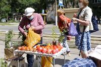 Незаконная торговля «с земли»: почему не все туляки хотят идти на рынки?, Фото: 24