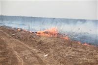 """Возгорание сухой травы напротив ТЦ """"Метро"""", 7.04.2014, Фото: 1"""