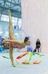 Кубок общества «Авангард» по художественной гимнастики, Фото: 14