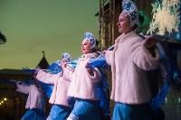 В Тульском кремле открылась новогодняя елка, Фото: 56
