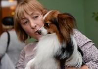 """Выставки собак в ДК """"Косогорец"""", Фото: 16"""