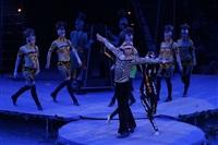 В Тульском цирке прошла премьера аква-шоу, Фото: 47