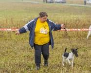 Международная выставка собак, Барсучок. 5.09.2015, Фото: 13