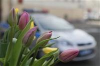 Полицейские поздравили автоледи с 8 Марта, Фото: 13
