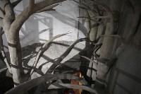 Новое здание тульской экзотариума, Фото: 56