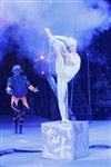 В Тульском цирке прошла премьера аква-шоу, Фото: 8