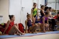 Спортивная гимнастика в Туле 3.12, Фото: 135