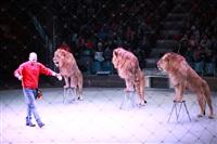 Новая программа в Тульском цирке «Нильские львы». 12 марта 2014, Фото: 11