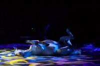 Туляков приглашают на новогоднее представление «Ёлка в цирке», Фото: 80