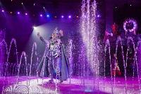 Шоу фонтанов «13 месяцев»: успей увидеть уникальную программу в Тульском цирке, Фото: 274