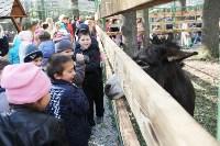 В Новомосковске открылся мини-зоопарк, Фото: 10