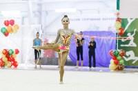 Художественная гимнастика. «Осенний вальс-2015»., Фото: 121