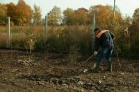 Высадка деревьев на территории бывшей судаковской свалки, Фото: 2