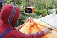 Гигантские тыквы из урожая семьи Колтыковых, Фото: 32