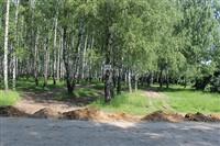Окопы в Пролетарском парке, Фото: 1
