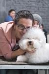 Выставка собак в Туле 26.01, Фото: 50
