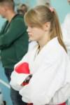 Открытое первенство и чемпионат Тульской области по каратэ (WKF)., Фото: 26
