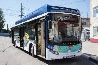 Электробус может заменить в Туле троллейбусы и автобусы, Фото: 13