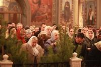 Рождественские богослужения, Фото: 69