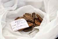 Раскопки на берегу Упы, Фото: 6