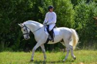В Ясной поляне стартовал турнир по конному спорту, Фото: 62