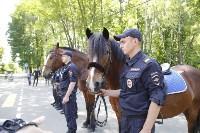 Конный патруль в Туле, Фото: 6
