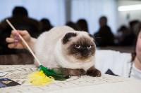 В Туле прошла выставка «Пряничные кошки» , Фото: 75