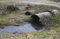 С заброшенных очистных канализация много лет сливается под заборы домов, Фото: 1