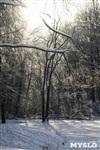 Зимняя сказка Платновского парка, Фото: 19