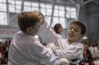 Соревнования по восточному боевому единоборству, Фото: 34