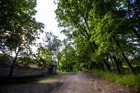 Летний день в Ясной Поляне, Фото: 6