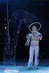 В Тульском цирке прошла премьера аква-шоу, Фото: 63