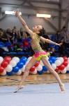 Соревнования по художественной гимнастике 31 марта-1 апреля 2016 года, Фото: 123