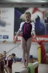 Соревнования по спортивной гимнастике на призы Заслуженных мастеров спорта , Фото: 76
