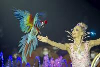 Шоу фонтанов «13 месяцев» в Тульском цирке – подарите себе и близким путевку в сказку!, Фото: 28