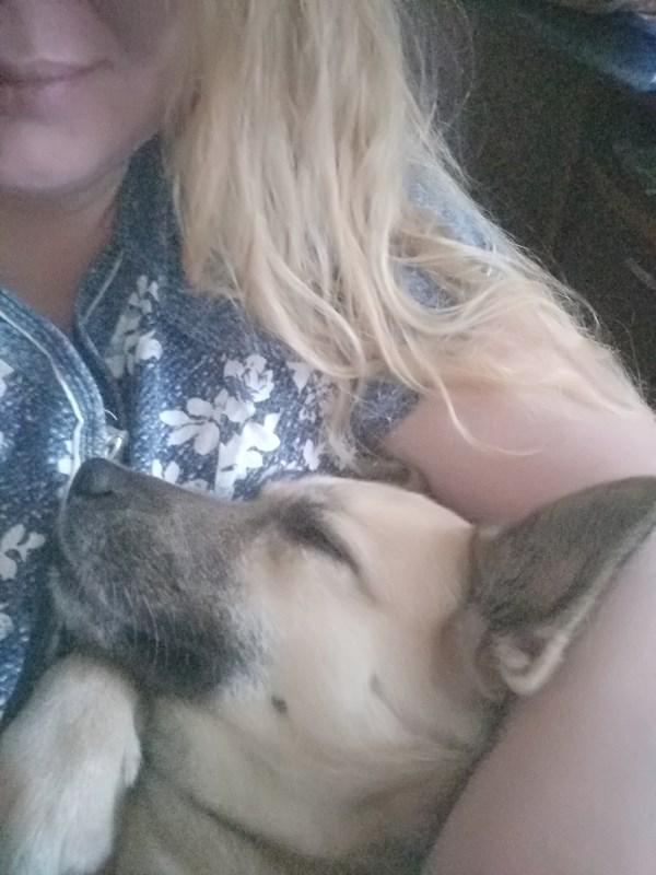 Домашнее селфи. Пёс заснул на руках)