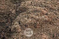 Свалка куриного помета Торхово, Фото: 3