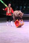 Цирк «Вива, Зорро!» в Туле , Фото: 1