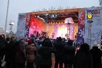 На площади Ленина в Туле открылась новогодняя ярмарка , Фото: 10
