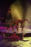 Aqua Show в Тульском цирке, Фото: 11