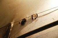 Сергей Шестаков об УК «Восход»: «Ситуация сложная и может привести к негативным последствиям», Фото: 7