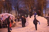 Открытие центральной елки в Новомосковске, Фото: 12