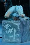 В Тульском цирке прошла премьера аква-шоу, Фото: 10