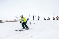 Третий этап первенства Тульской области по горнолыжному спорту., Фото: 63