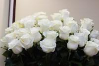 Ассортимент тульских цветочных магазинов. 28.02.2015, Фото: 33