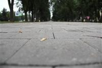 Новомосковск готов к проведению эстафеты олимпийского огня, Фото: 4